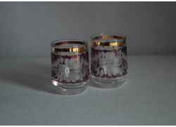 Pohárek 30ml listr duo fialová