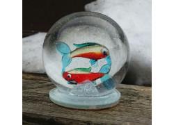 Sněžící koule Horoskop Ryby