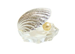 Pearl oyster in silver color www.sklenenevyrobky.cz