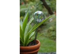 Glass watering ball 7,5x27 cm www.sklenenevyrobky.cz